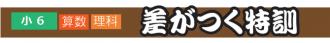 sagatuku_kakitai